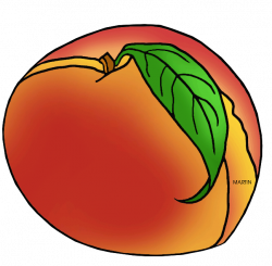 United States Clip Art by Phillip Martin, South Carolina State Fruit ...