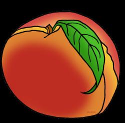 United States Clip Art by Phillip Martin, Georgia State Fruit - Peach