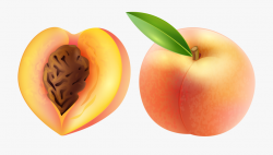 Peach Transparent Png Clip Art Image - Peach Clipart ...