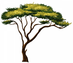 Painted African Tree PNG Clipart Picture | Trees | Pinterest ...