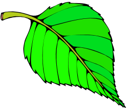 Paper Tree Clipart