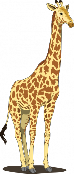 Giraffe Clip Art | Giraffe Clip Art Royalty FREE Animal Images ...