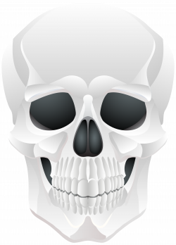 Halloween Skull PNG Clip Art | Gallery Yopriceville - High-Quality ...