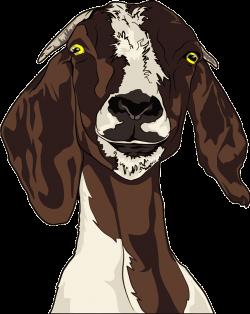Clipart - Goat Head
