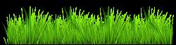 grass-clipart-transparent-grass-clipart-free-clip-art-images.png ...
