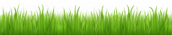 40 units of Grass