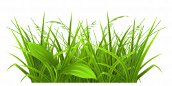 Grass Silhouette Free at GetDrawings.com | Free for personal use ...