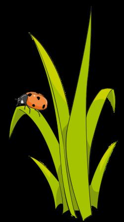 Grass and Flowers Clip Art | grass2 | LADYBUGS GALORE | Pinterest ...