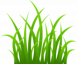 28+ Collection of Grass Clipart Free | High quality, free cliparts ...