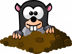 28+ Collection of Cartoon Mole Clipart | High quality, free cliparts ...