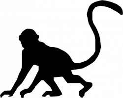 Monkey Head Silhouette at GetDrawings.com | Free for personal use ...