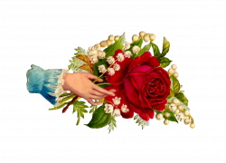 Clip Art Designs, Vector Clip Art Graghic: Free Rose Clip Art ...