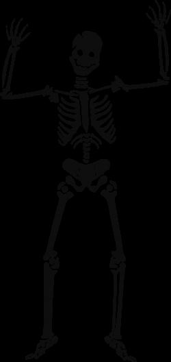 Bones Clipart Biology Science #2551789