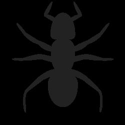 OnlineLabels Clip Art - Ant