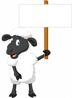 LOST SHEEP not LOST CAUSE! To Jehovah, a lost sheep is not a lost ...