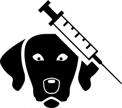 Veterinary Surgeon Svg Png Icon Free Download (#488762 ...