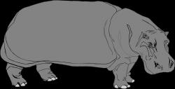 Hippo | Free Stock Photo | Illustration of a hippo | # 3608