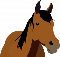 28+ Collection of Horse Front View Clipart | High quality, free ...
