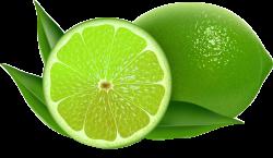 Lemon Persian lime Key lime Clip art - Fresh lemon 1000*583 ...