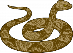 28+ Collection of Snake Clipart   High quality, free cliparts ...