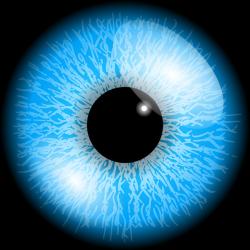 eyeball png - Поиск в Google | глаза на фотошоп | Pinterest | Eye ...
