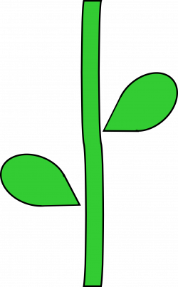 Flower Stem by @barnheartowl, A green flower stem, on @openclipart ...