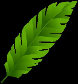 Green Leaf PNG Clip Art - Best WEB Clipart