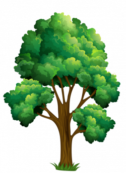 24.png | Pinterest | Clip art, Tree leaves and Clip art pictures