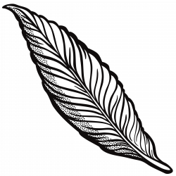 Clipart - feather - lineart