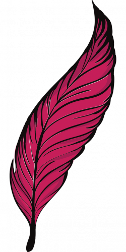Bird Feather Quill Clip art - Bird 640*1280 transprent Png Free ...