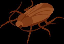 Cockroach PNG Clip Art - Best WEB Clipart