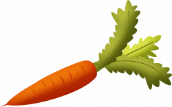 Carrot-with-Green-Leaves-Clipart.png (2542×1595) | Carrots ...