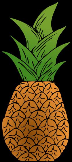 Clipart - Alternative Pineapple