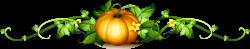 Pumpkin Vine Royalty-free Clip art - pumpkin,vegetables,leaf 3762 ...