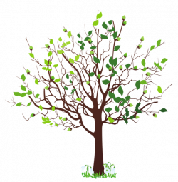 Spring Tree with Snowdrops PNG Clipart Picture | Trees | Pinterest ...