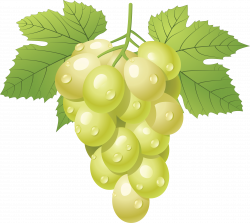 28+ Collection of Green Grapes Clipart | High quality, free cliparts ...