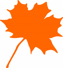 Maple-leaf Icons PNG - Free PNG and Icons Downloads