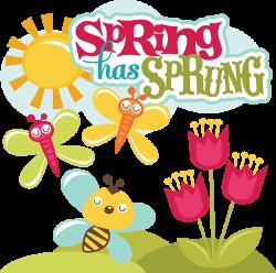 Spring Has Sprung SVG scrapbook collection svg files for scrapbooks ...