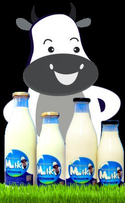 Anantham Milk: Buy Organic Milk Online Chennai