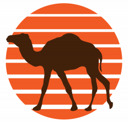 TDC Hikes the Arizona Trail — The Dusty Camel