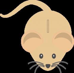 Light Coloured Mouse Clip Art at Clker.com - vector clip art online ...