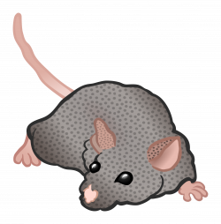 Clipart - mouse - coloured