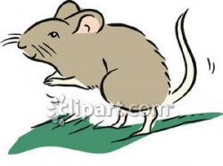 Mouse Standing On Hind Legs - Royalty Free Clipart Picture