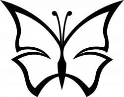 Free Black And White Butterfly, Download Free Clip Art, Free Clip ...