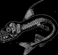 Public Domain Clip Art Image | Real Sea Monster | ID: 13534788015761 ...