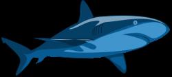 Public Domain Clip Art Image | Shark Pure | ID: 13929559216720 ...