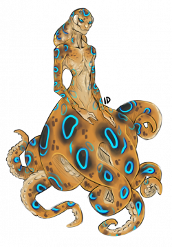 A] Blue-ringed Octopus: SOLD by Gembone on DeviantArt
