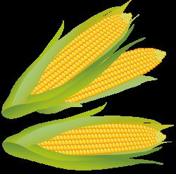 corn clipart corn clip art free clipart panda free clipart images ...
