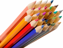 Bunch Of Color Pencils transparent PNG - StickPNG