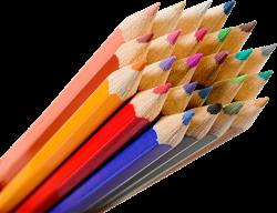 Bunch Of Color Pencils transparent PNG - StickPNG